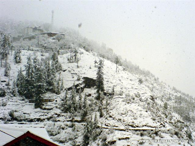 Heavy snowfall on higher reaches of Himachal