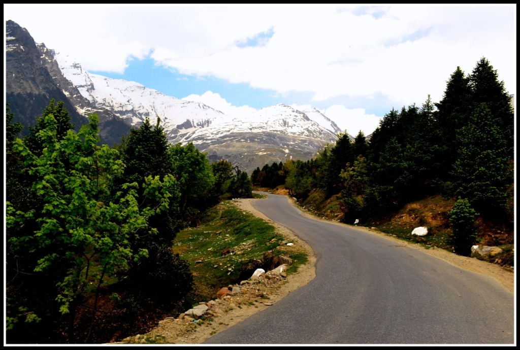 Summers in Manali_Road to Rohtang