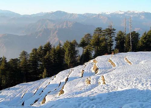 Himachal tourism survey | Hill Post