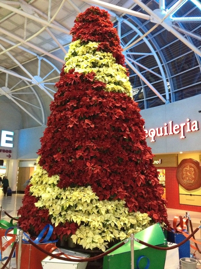 Christmas Tree inside Charlotte, North Carolina airport
