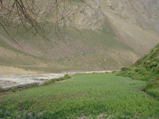 Protect Chenab river from onslaught' | Hill Post