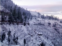 Season first snows cover Matiana in Shimla Hills