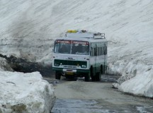Himachal Roadways draws plans to replace 1000 buses