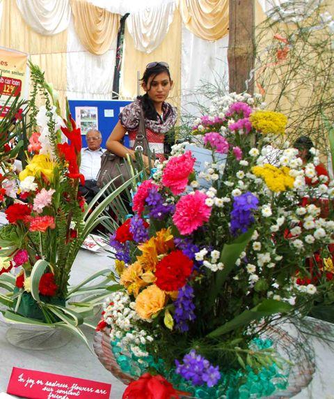 Shimla summer flower show