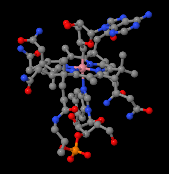 Vitamin B12 Deficiency gene Found