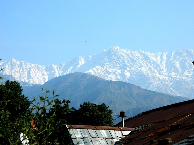 Fresh Snowfall in Dharamsala