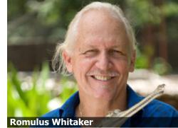 essay on romulus whitaker