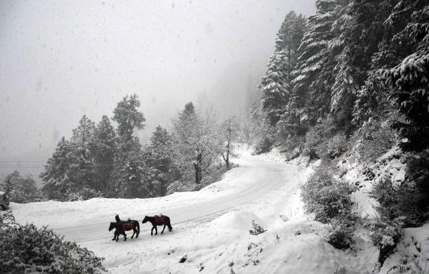 Kufri Snowfall