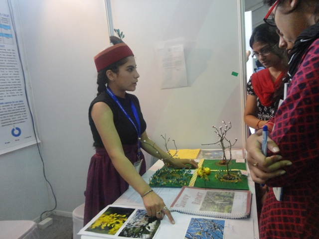 Jaya presents her model in IRIS Science Fair, Bangalore.jpg