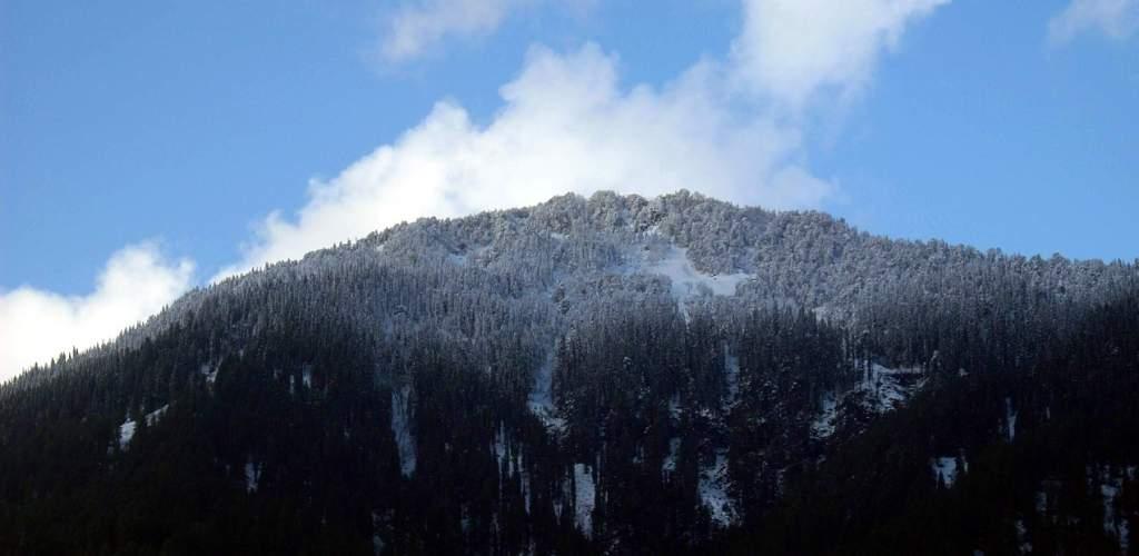 shuru-snowfall-21dec08-8