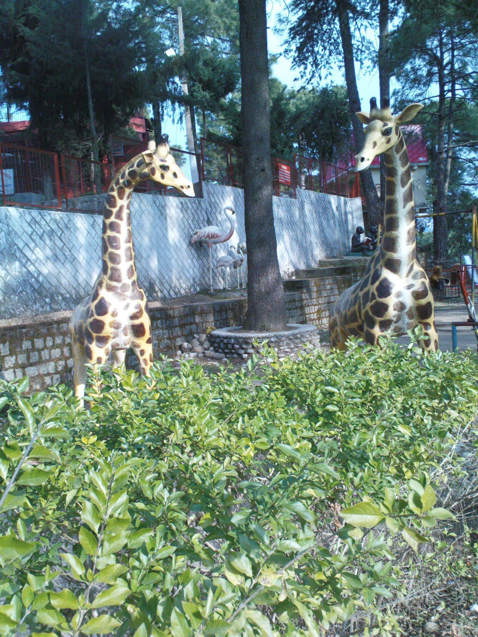 sankat mochan temple park in shimla