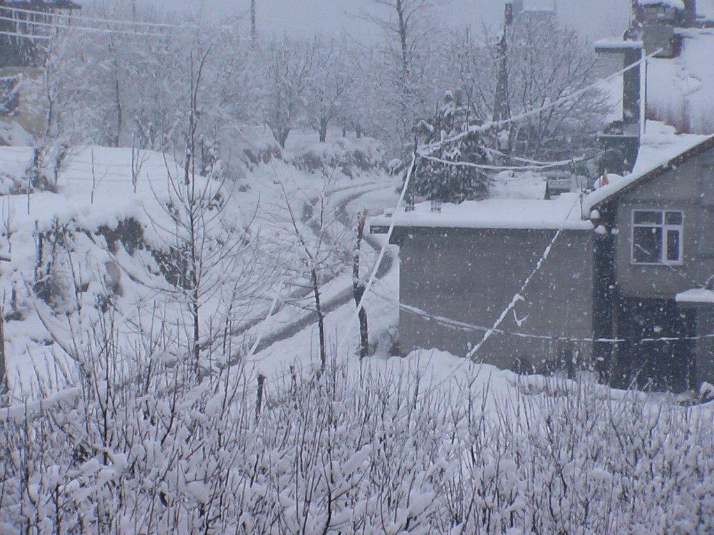 shuru-snow-fall-5.JPG