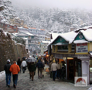 himachal in snow, shimla