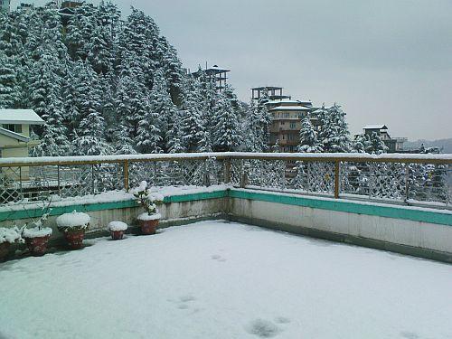 Snowfall in New Shimla