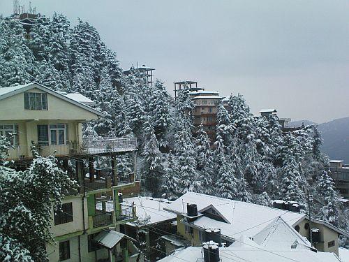 Snowfall in New Shimla 03