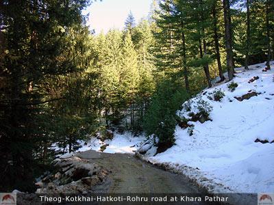 Theog-Kotkhai-Hatkoti-Rohru Road