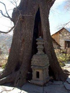 khakhnal-kartikeye-temple-20jan09-7