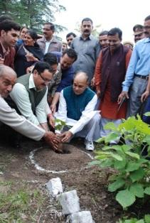 Dhumal, Nadda planting sapling