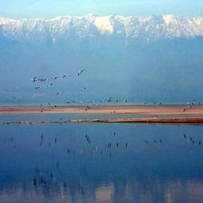 Towering Dhauladhar over Pong Dam Lake