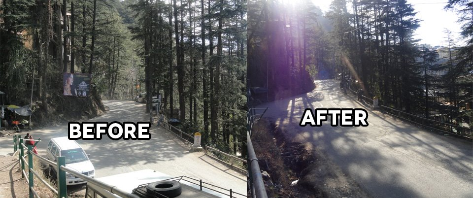 Unauthorized Hoardings Nailed on Trees (Before & After - Special Thanks to MC Shimla)