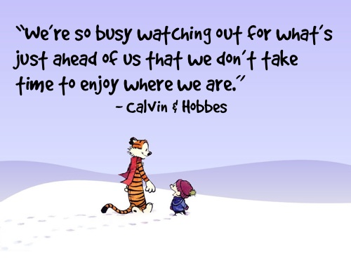 Calvin and Hobbs Life