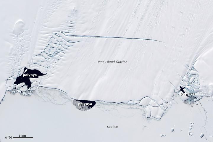 Melting Glaciers_Antarctica