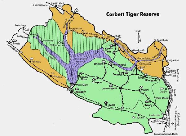 Corbett Tiger Reserve Uttarakhand