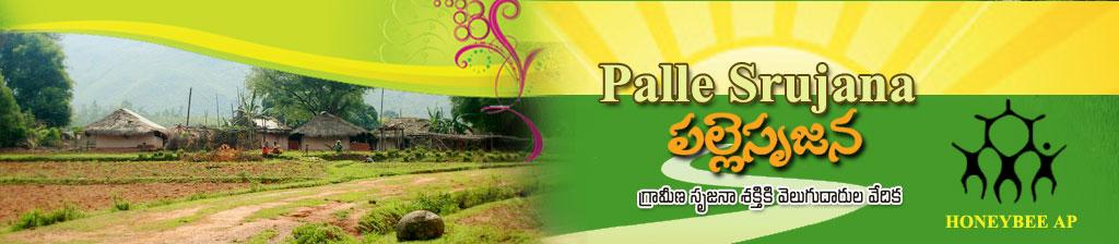 Palle Srujna HoneyBee Logo