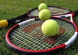 AITA selects fresh team for Davis Cup tie