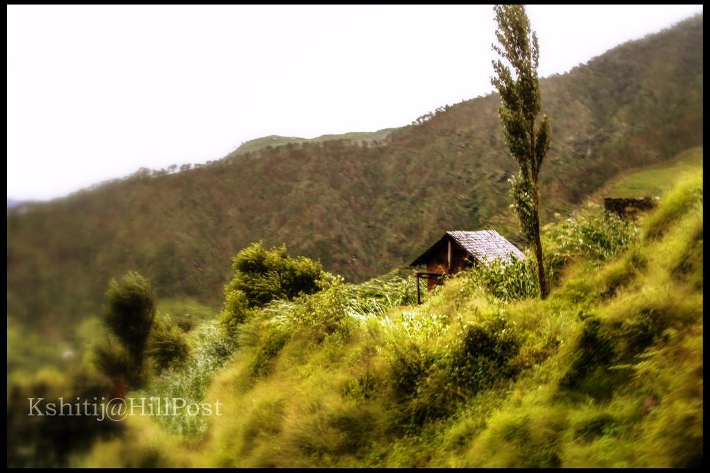 Kamand View IIT Mandi