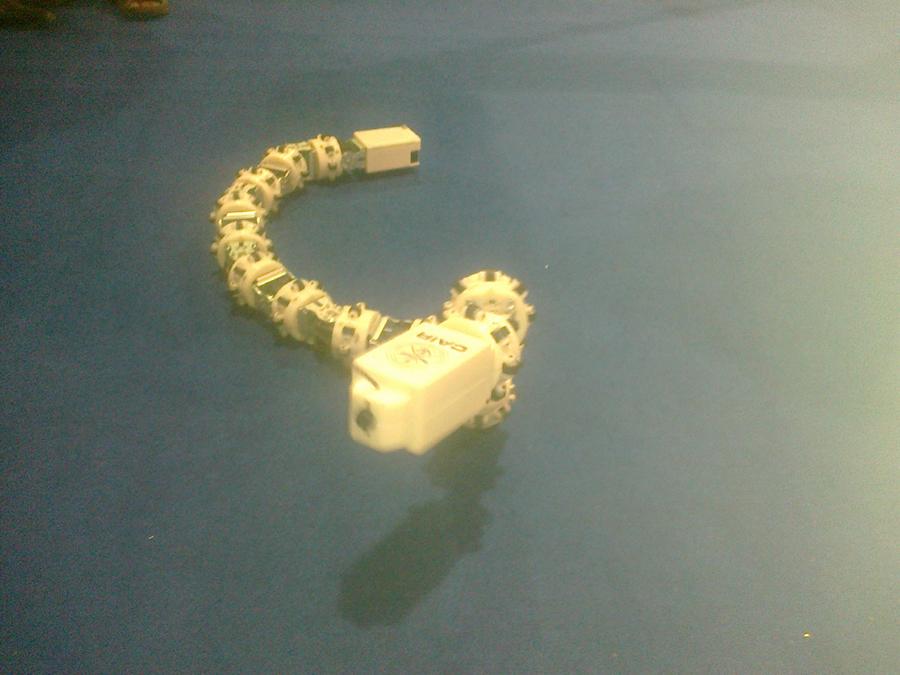 Snake Robot 1