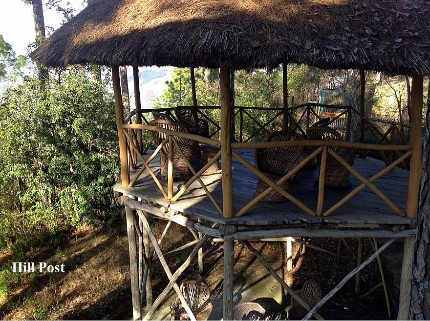 Macchan for bird watching - Potters Hill, Shimla