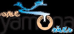 Save Yamuna Campaign