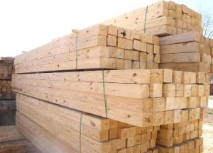 Timber imports help J&K conserve forests