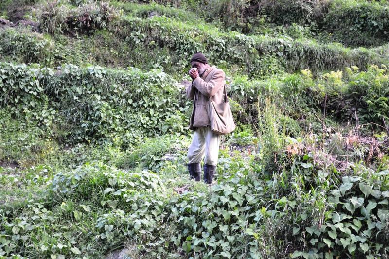 Old Man Enjyoing Smoke on His way to Work in Himachal