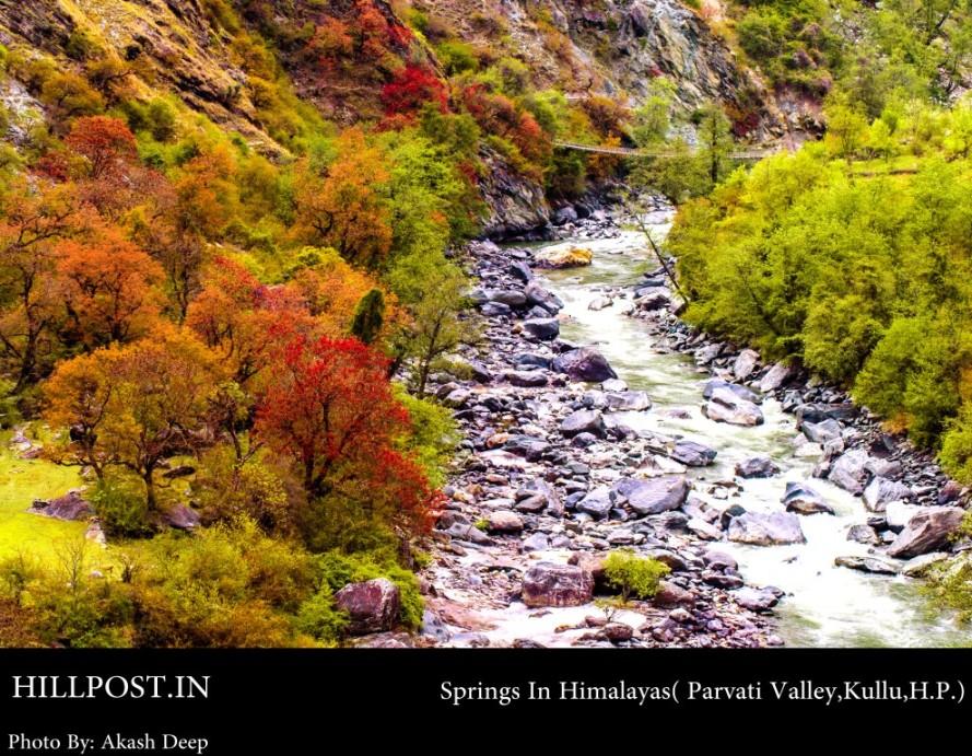 Springs in Himalayas - Parvati Valley in District Kullu, Himachal Pradesh