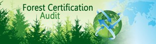 forest audit