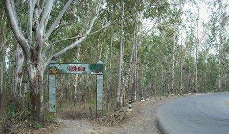 Pauri Wala Road