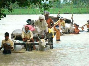 350 families moved from flooded Haryana villages