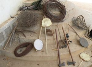 Tiger poaching equipment found in Uttarakhand forests