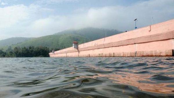Bhakra, Pong dams get higher water inflow