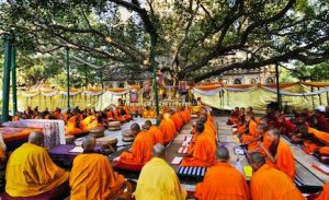 FRI experts to examine Mahabodhi tree for any damage
