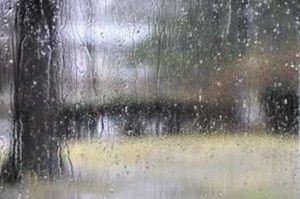 Heavy rains continue in Himachal, more in store!