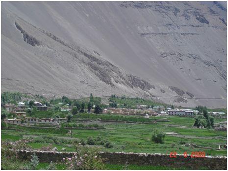 A prosperous Spiti landscape: Photo Dr Amit Vikram