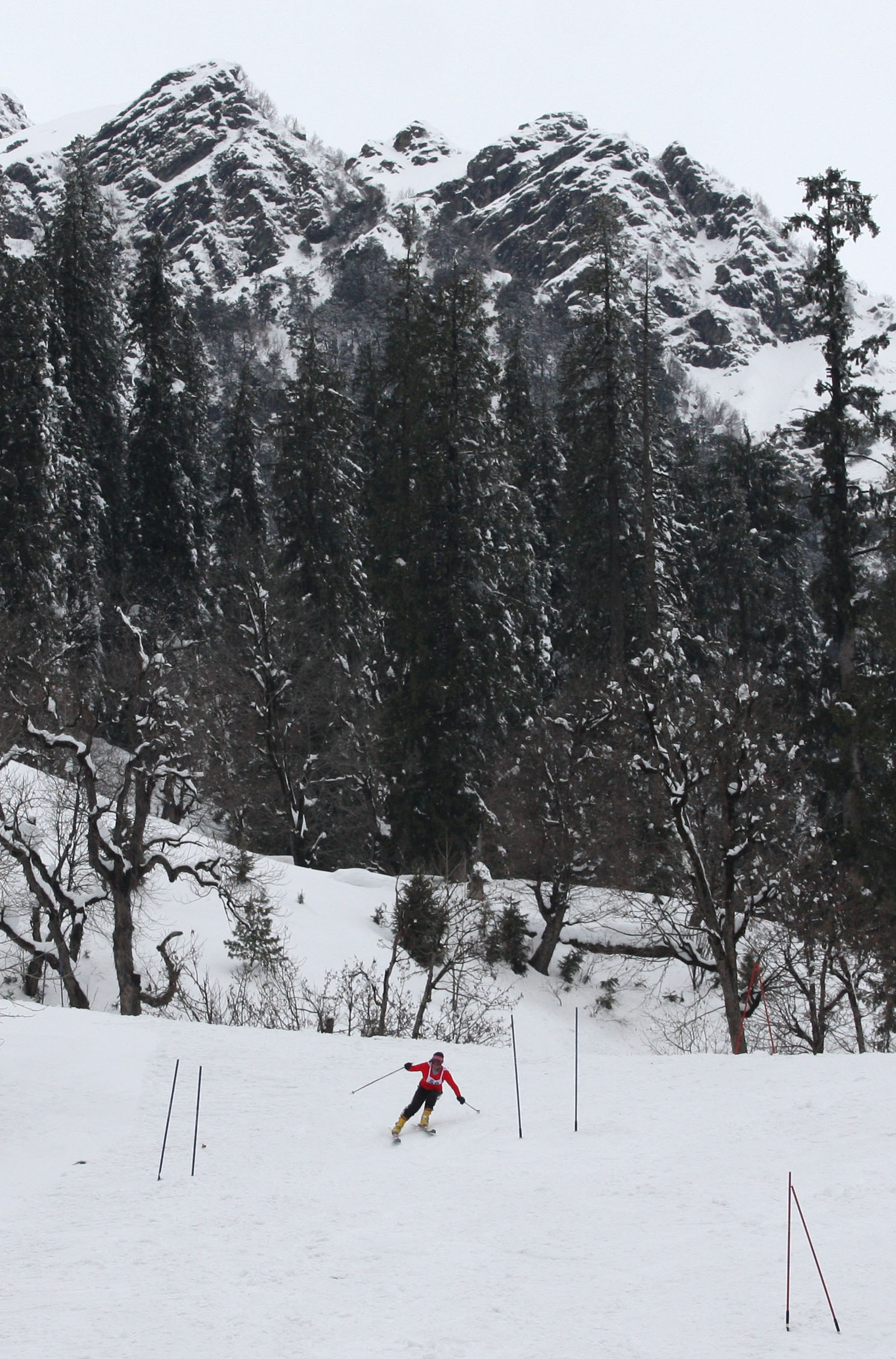 Alpine skiing in Himachal