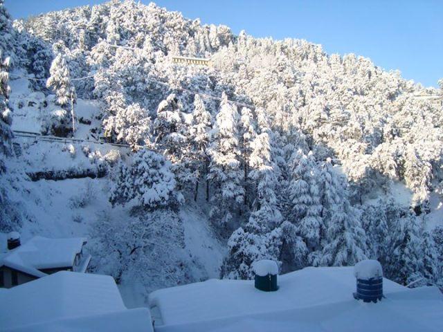 Shimla afternoon freeze: Photo courtesy - Devinder Thakur